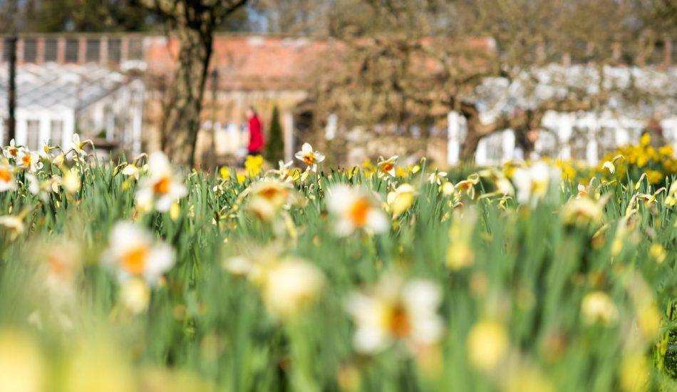 Easter 2016 - Somerleyton Hall & Egg Hunts